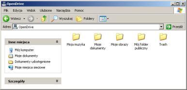 opendrive-interfejs-lokalny